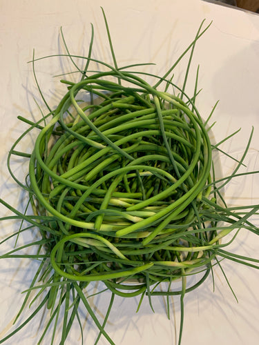 Gourmet Hardneck Garlic Scapes