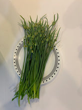 Load image into Gallery viewer, Gourmet Elephant Garlic Scape
