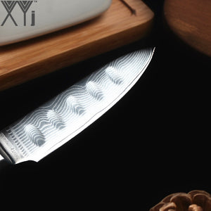 XYj Damascus Kitchen Cooking Knives Fruit Knife Japanese DamascusKitchen Knife VG10 67 Layer Ultra Sharp Colorful Wood Handle