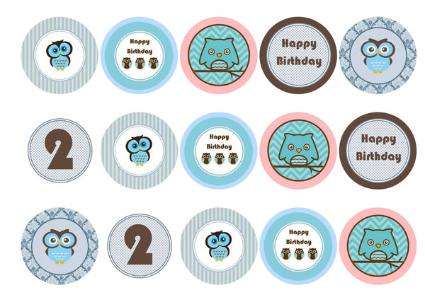 Printed edible cupcake toppers - blue owls - icing paper or rice paper.