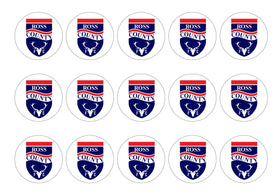15 printed cupcake toppers with the Ross County badge