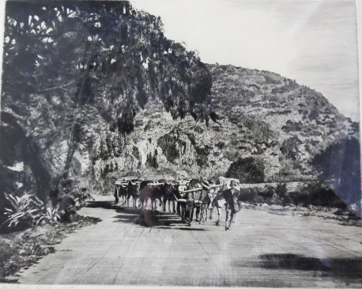Pemberton, H.M: On the Pietersburg Road to Pretoria