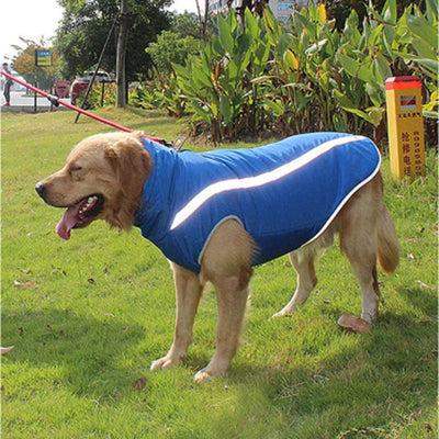 The Ultimate Protective Dog Coat