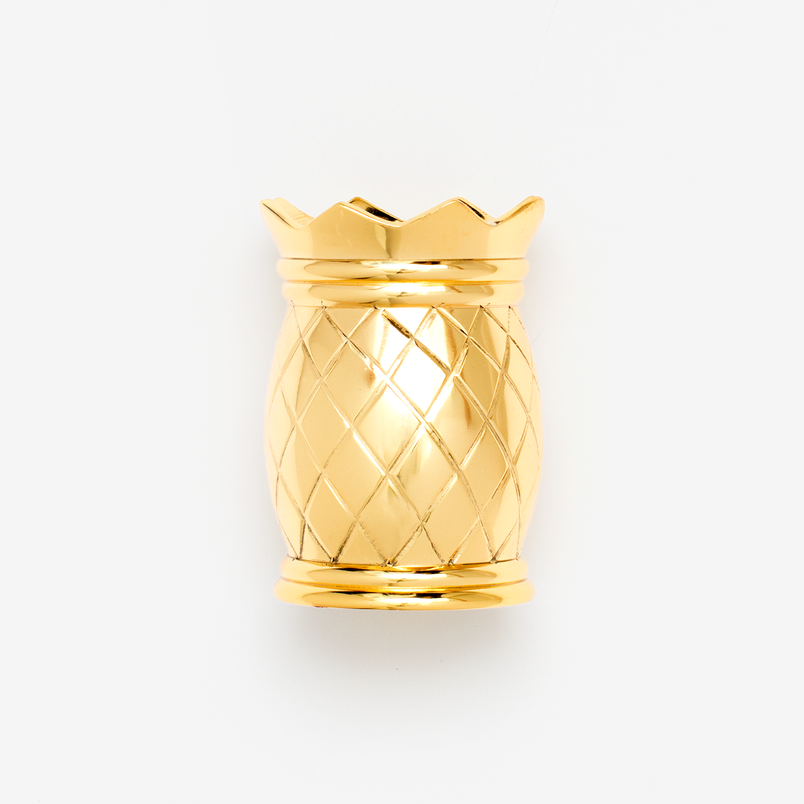 Pineapple Pen Cup