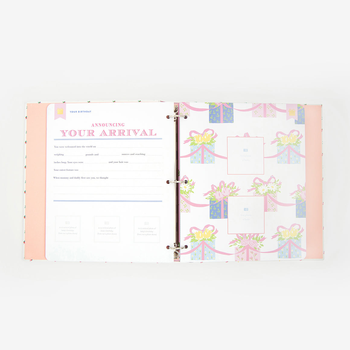 TBBC + Simplified Baby Book, Port Royal Rosebud