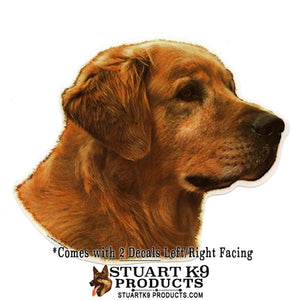 Golden Retriever Head | Pair