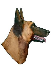 Belgian Malinois Head  | Weather Resistant |Large Pair