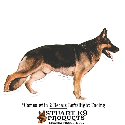German Shepherd Body | Pair