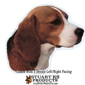 Beagle Head Decal | Pair