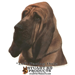 Bloodhound Head | Left Facing Only