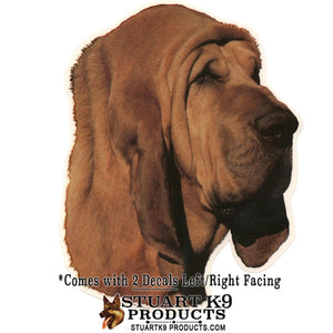 Bloodhound Head Decal | Pair