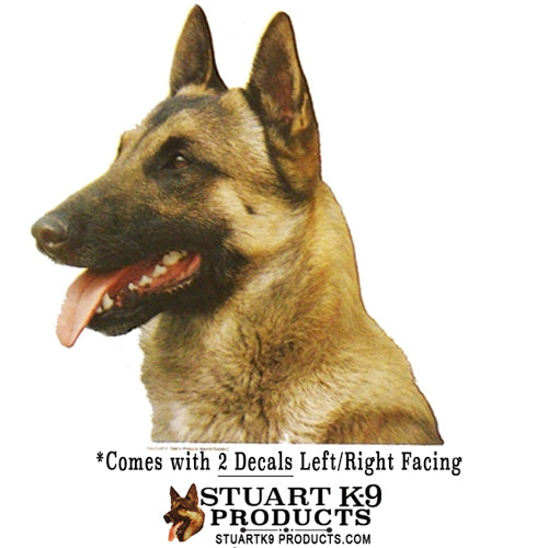 Belgian Malinois Head Decal | Pair