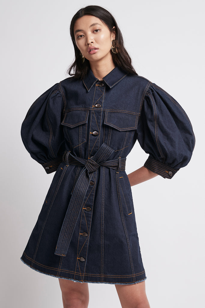 Tori Denim Dress