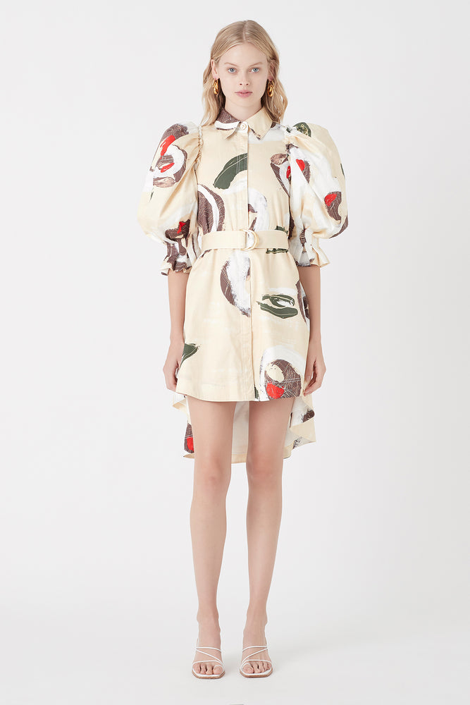 Eucalypt Puff Sleeve Shirt Dress