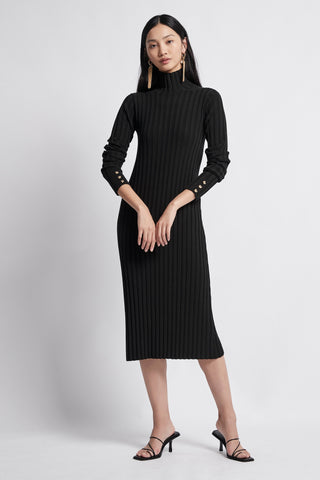 Allégro Turtleneck Dress