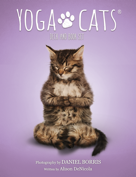 Yoga Cats Deck