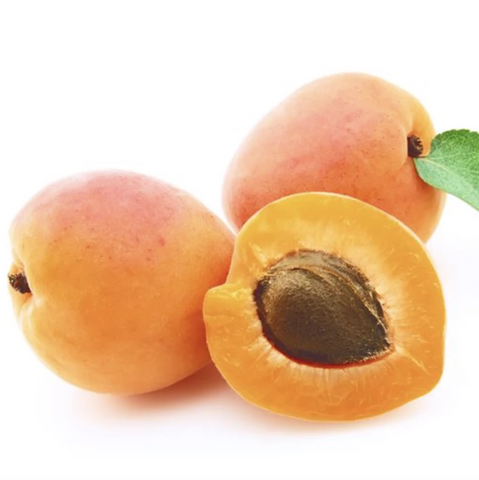 Apricot Kernel Oil |  杏核油