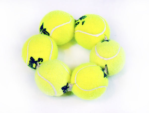 Ringball - Green Planet Pet Products - Ball Toys - 1