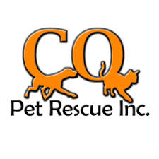 Round Up for CQ Pet Rescue