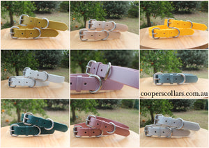 2 Collars + Brass Plates for Little Dogs