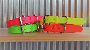 Fluro Orange Dog Collar