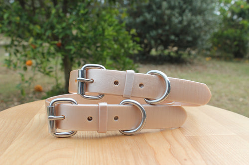 Champagne Shimmer (Rose Gold) Dog Collar