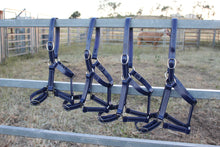 Load image into Gallery viewer, Pony Navy Horse Halter