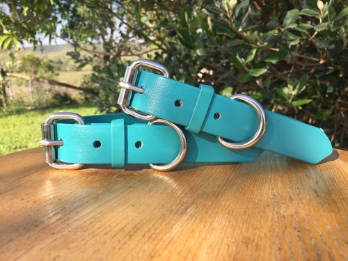 Teal Green Dog Collar