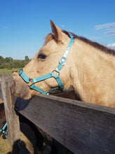 Load image into Gallery viewer, Full Ocean Shimmer Horse Halter