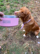 Load image into Gallery viewer, Dog Bowl Pink