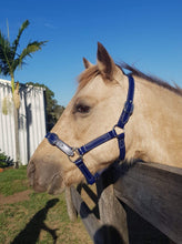 Load image into Gallery viewer, Full Navy Horse Halter