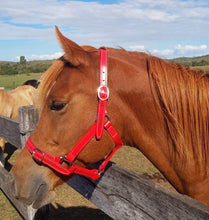 Load image into Gallery viewer, Cob Red Horse Halter