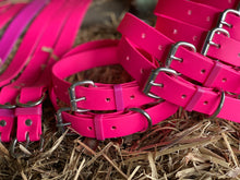 Load image into Gallery viewer, Hot Pink Dog Collar