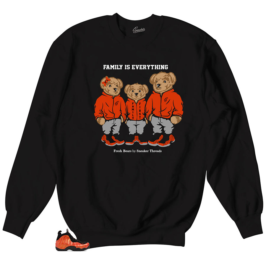 Polo bear family sweaters | Family inspired shirt for foamsposite.
