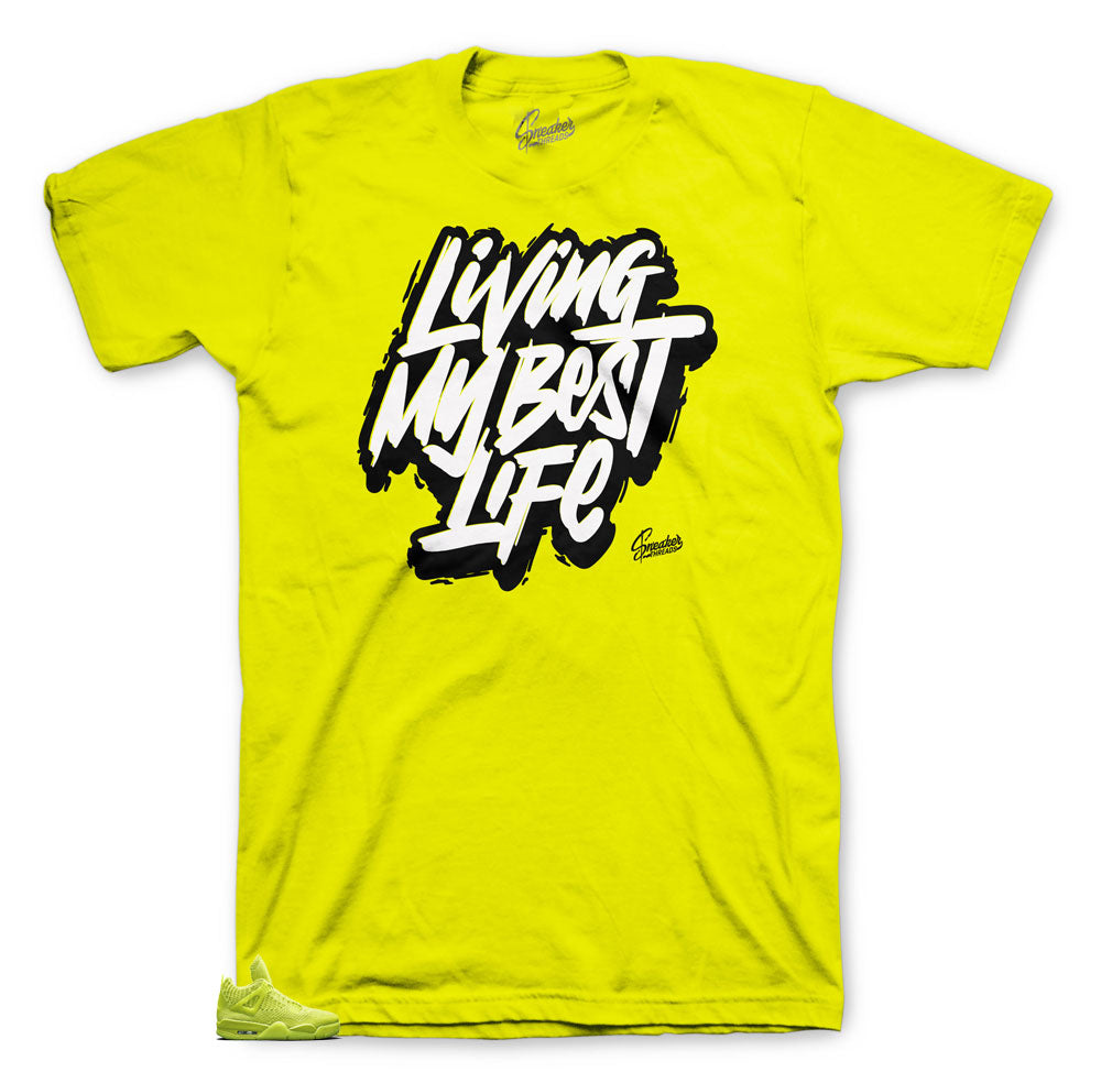Jordan Volt 4 Flyknit Collection Living life tee