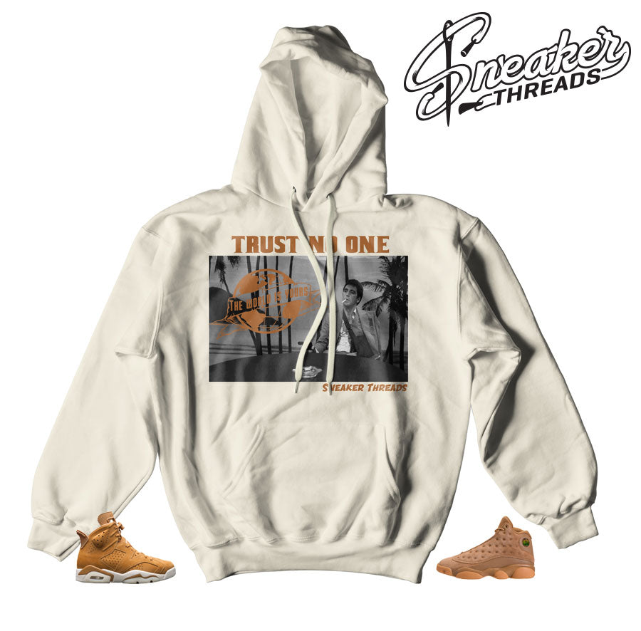 Jordan 6 wheat hooded sweatshirts match retro golden harvest retro 1.