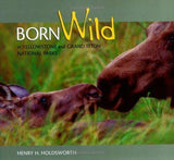 Born Wild Books