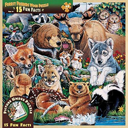 48pc Wood Puzzles