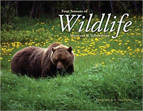 Four Seasons of Wildlife Montana & Yellowstone