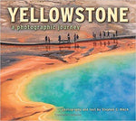 Yellostone: a photographic journey