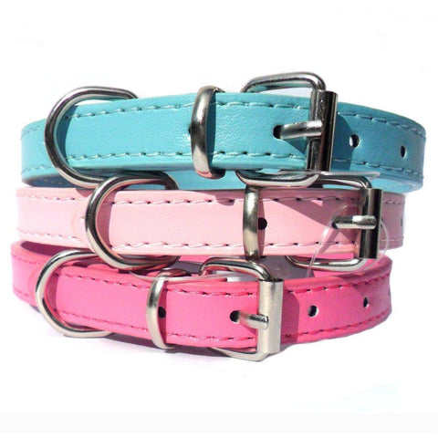 Image of Kensington Plain Dog Collars Dog Collar Salmon Oscar