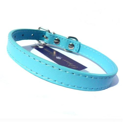 Kensington Plain Dog Collars Dog Collar Salmon Oscar Blue Medium
