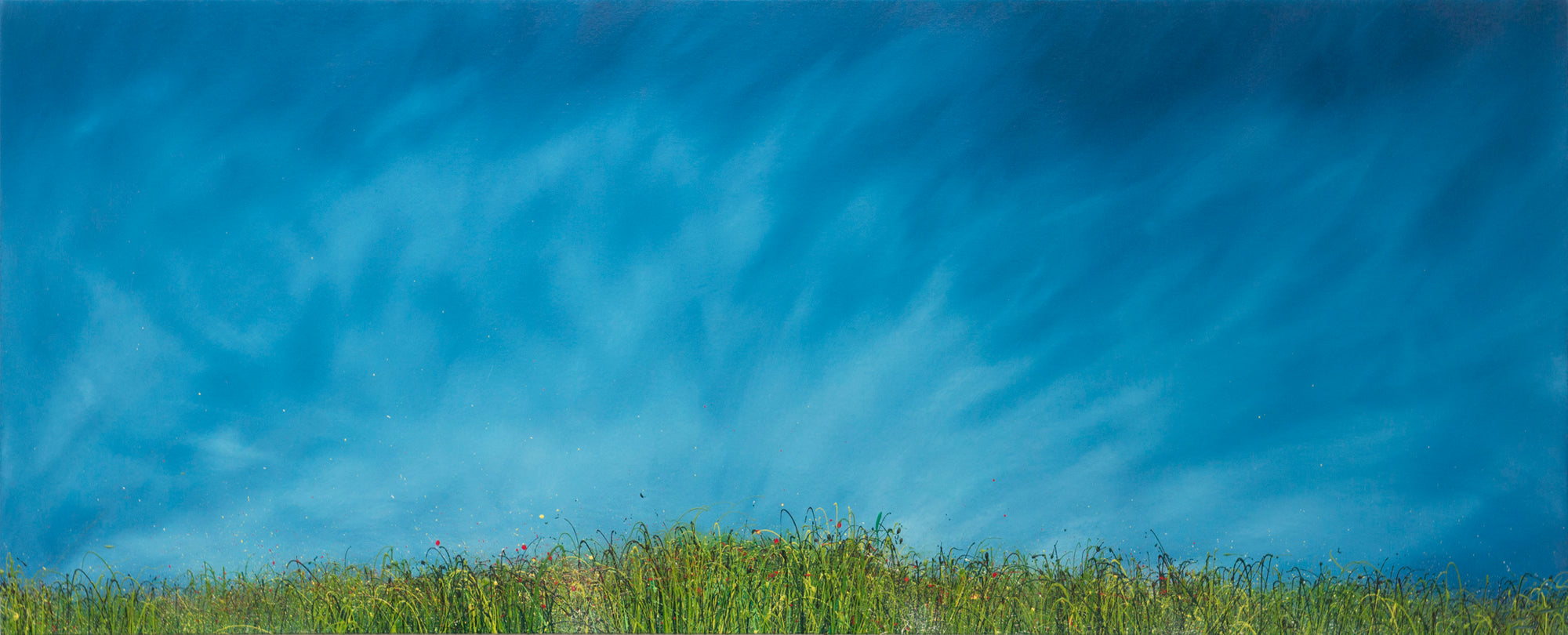 I glanced, Full image of An oil painting of wild grasses and blue sky by British contemporary artist Royden Astrop