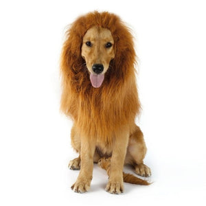 Fancy Dress Up Lion Mane Costume for Dogs