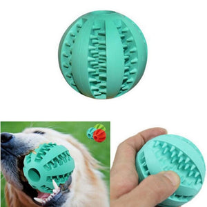 Interactive rubber dog toy balls