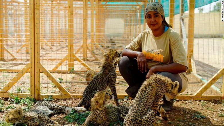Cheetah Conservation Fund in Somalia