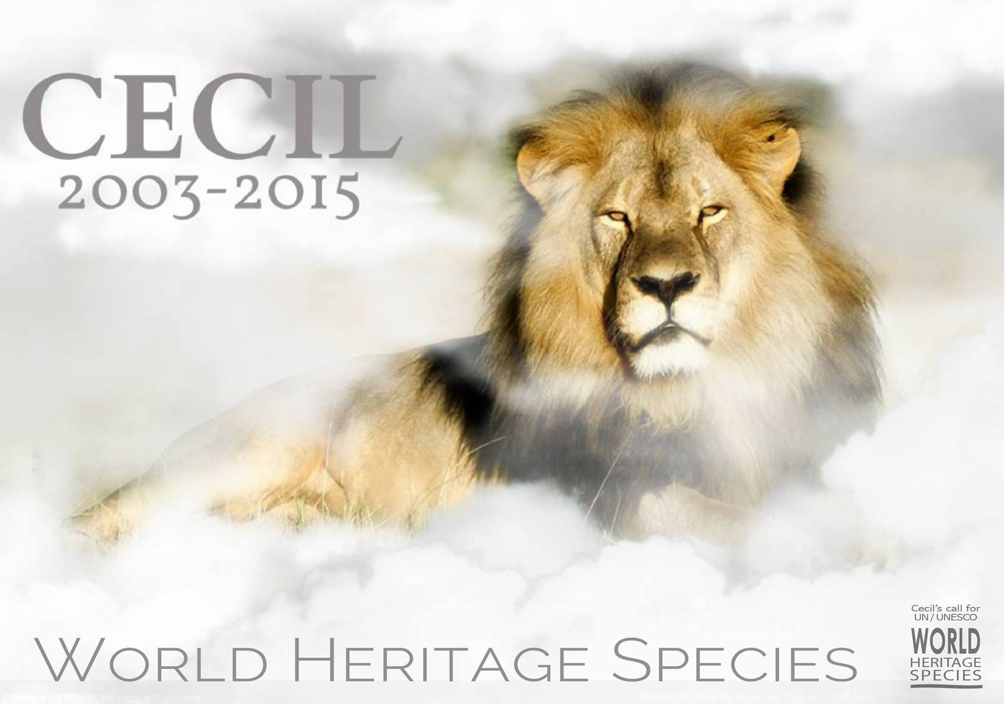 Honor Cecil by Signing World Heritage Species Petition  #WorldHeritageSpecies