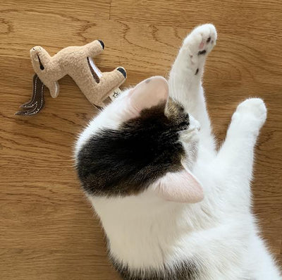 Cat Toy | gazelle
