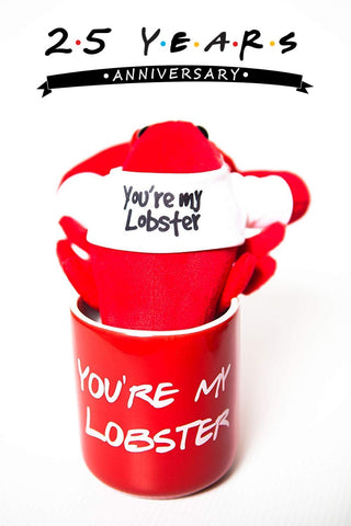 """You're My Lobster"" Mug and Plush Duo, inspired by Friends"