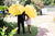 Ted's Yellow Umbrella